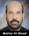http://www.humaliwalayazadar.com/2016/04/mukhtar-ali-sheedi-dhamaal.html
