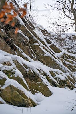 Winterwandern in Bad Harzburg | Kleiner und Großer Burgberg und Besinnungsweg | Baumschwebebahn | Wandern im Harz 06