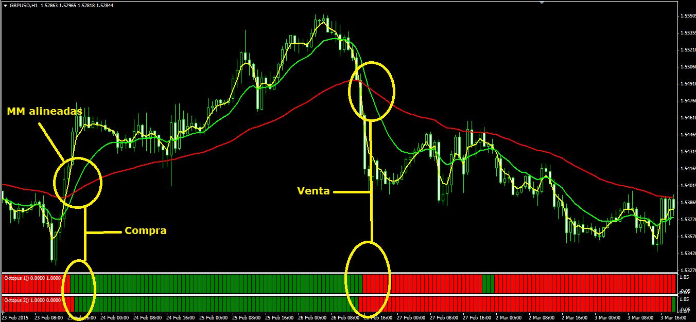 El mejor sistema de trading forex
