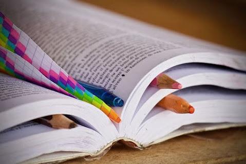 नए कोर्स पर आधारित बेसिक शिक्षक परिषद ई-पुस्तकें डाउनलोड करें  (new syllabus based download basic shiksha parishad ebooks)