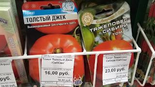 Сорта Помидоров Толстый Джек и Тяжеловес Сибири