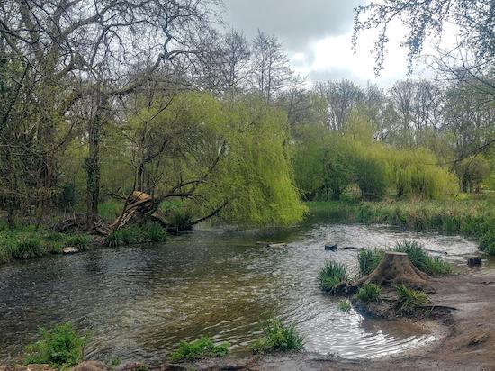 Downstream from Cassiobury Weir