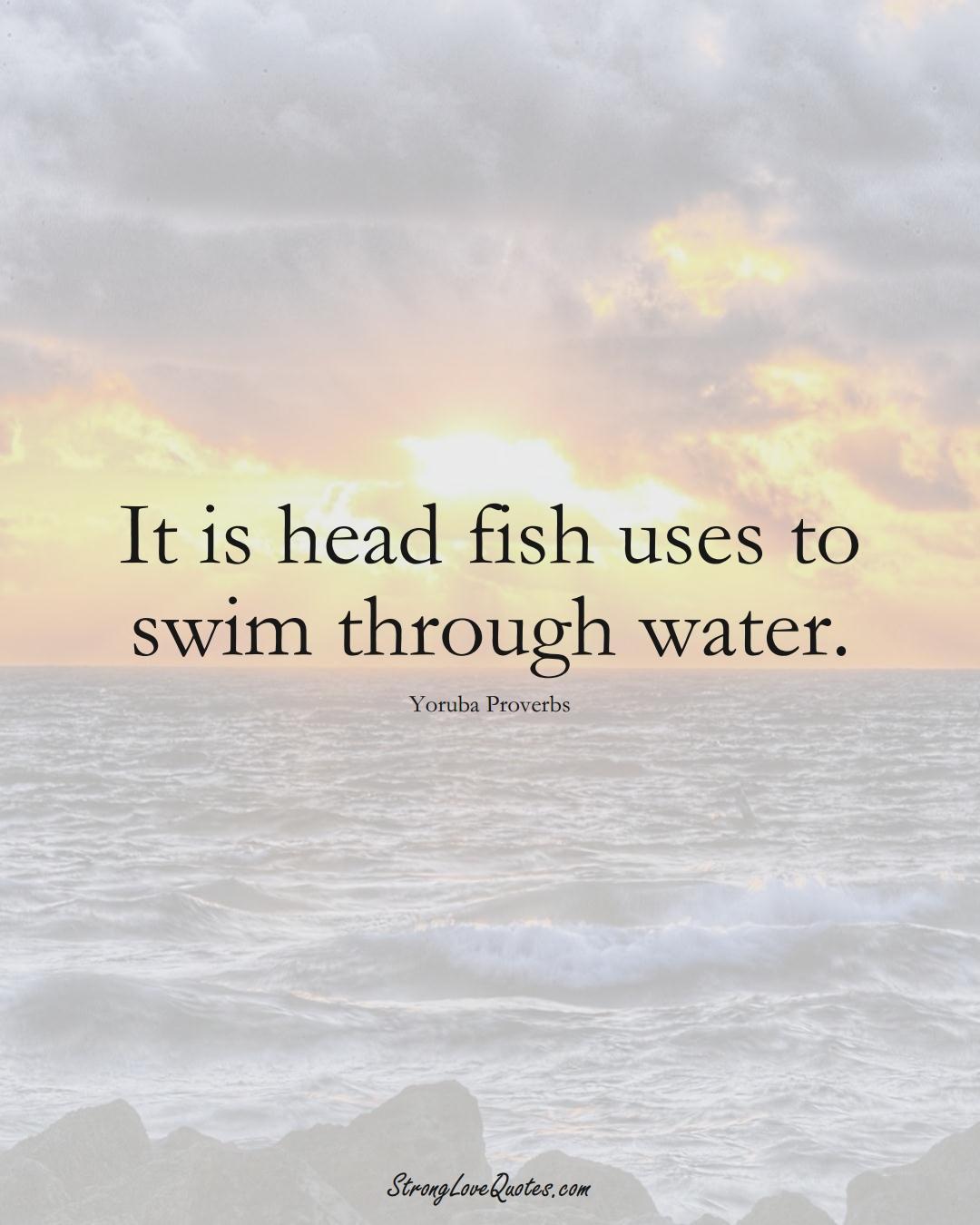 It is head fish uses to swim through water. (Yoruba Sayings);  #aVarietyofCulturesSayings