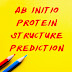 Ab Initio Protein Structure Prediction
