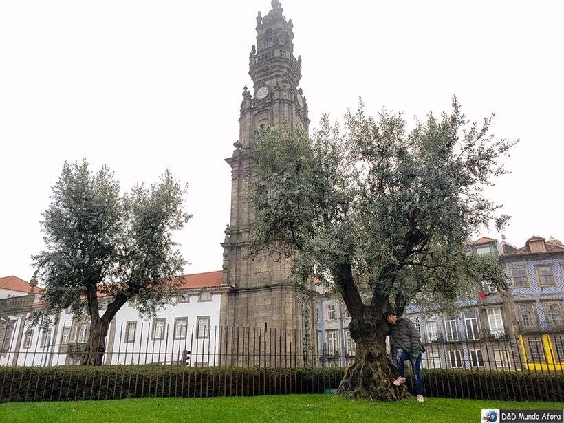 Jardim da Cordoária - O que fazer no Porto, Portugal