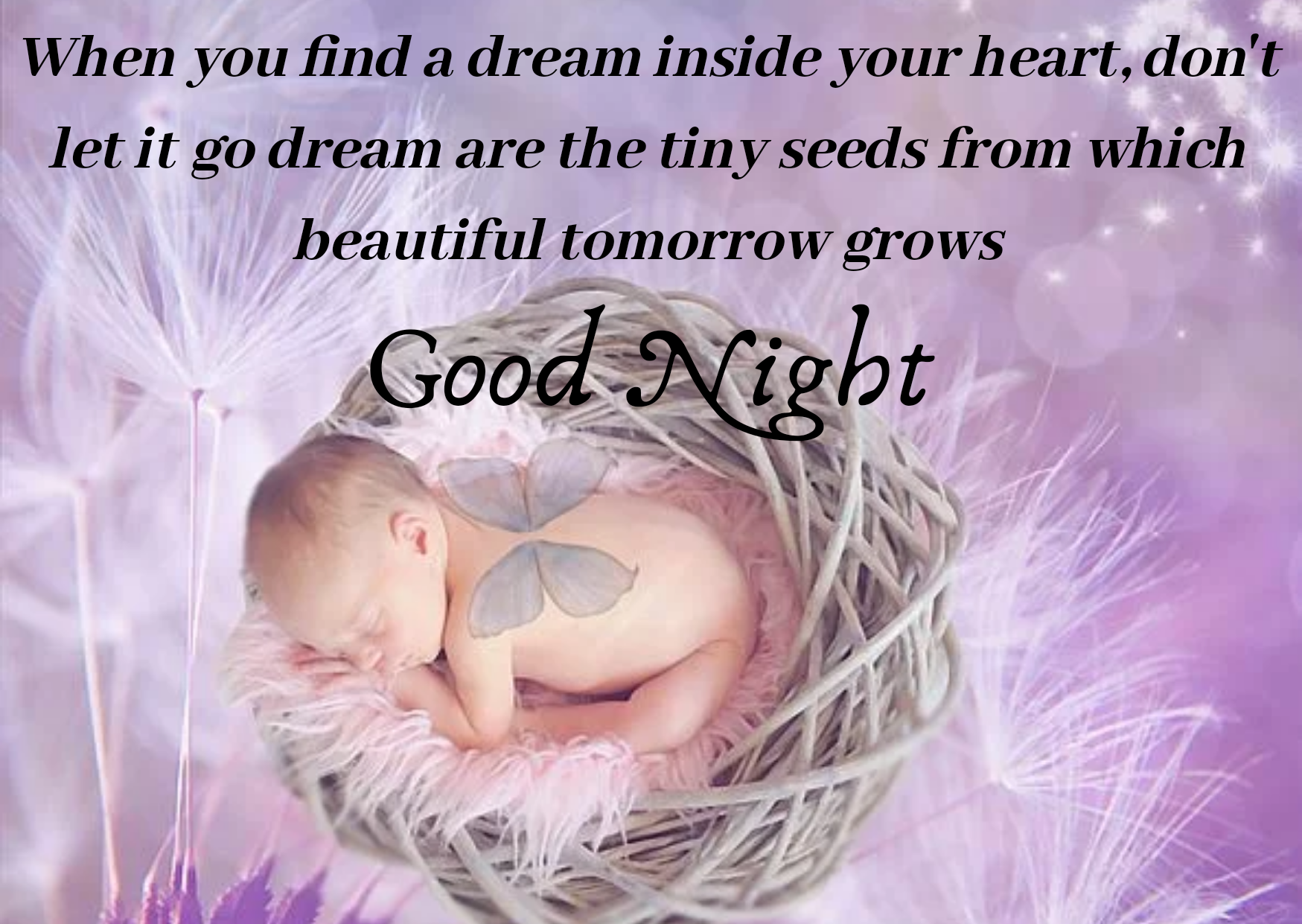 Good night status images, Best Beautiful Good Night English status, Good Night wishes massage, Good Night Images Picture, Photo, Quotes,
