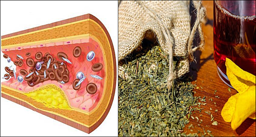 Hierbas medicinales para limpiar las arterias y los vasos sanguineos