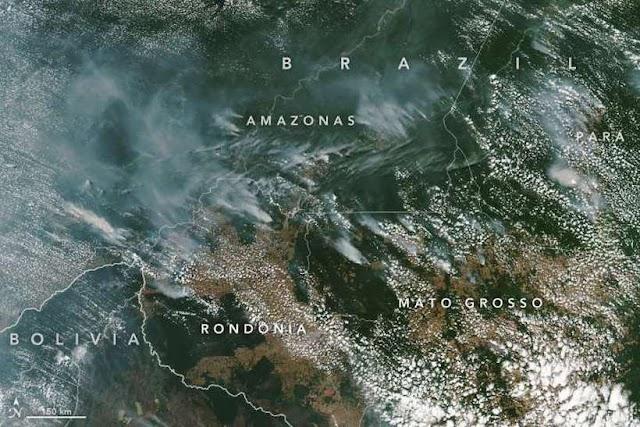 Satélite da Nasa registra concentração de queimadas na Amazônia