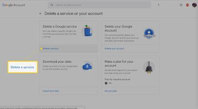"""click on """"Delete a Google service."""""""