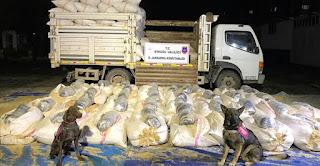 الأمن التركي يضبط 330 كغ من الماريجونا في شاحنة أعلاف