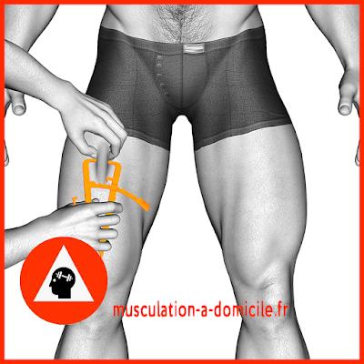 mesure cuisse homme pince à plis cutanés adipomètre musculation fitness
