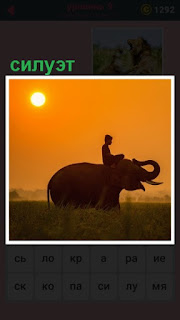 на закате силуэт слона с погонщиком на спине
