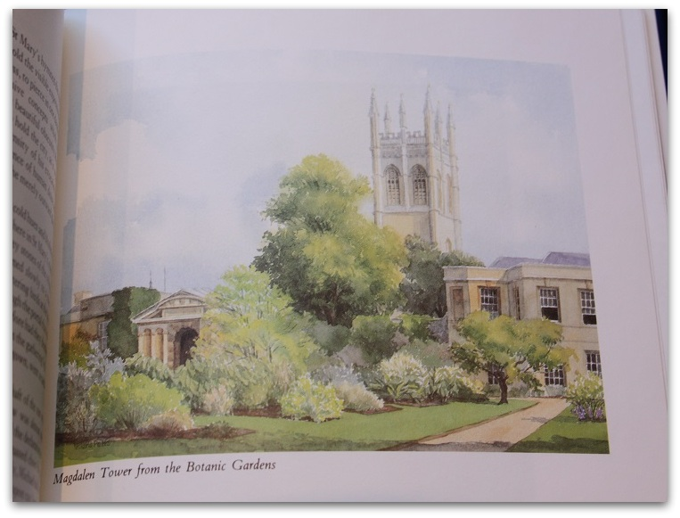 Wilson - Potts: Oxford - words & watercolours. Illustrations by Valerie Petts