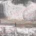На Русанівці чоловік косив траву, яку вже засипало снігом