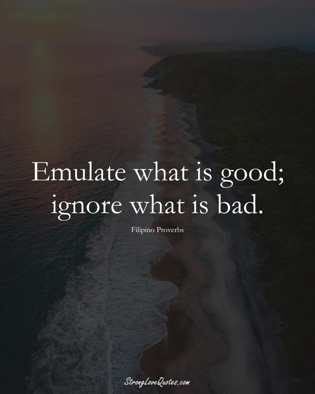 Emulate what is good; ignore what is bad. (Filipino Sayings);  #AsianSayings
