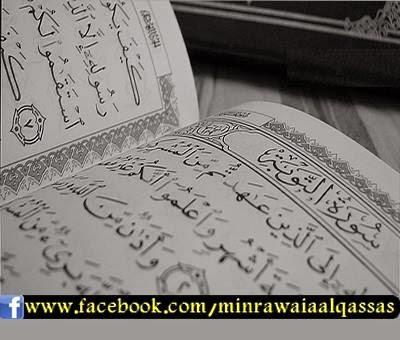 شبكة عدناني سورة التوبة