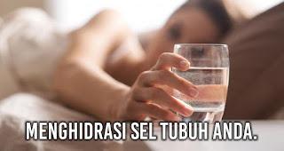 Dengan minum air putih setelah bangun tidur Anda telah Menghidrasi sel tubuh Anda.