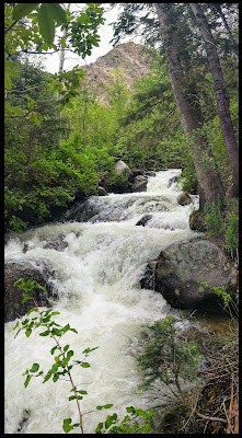 Bells Canyon Stream in June 201