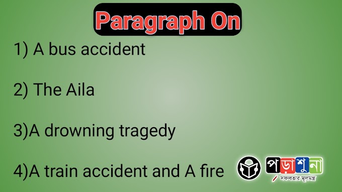 Write Paragraph on A bus accident, The Aila , A drowning tragedy, A train accident and A fire