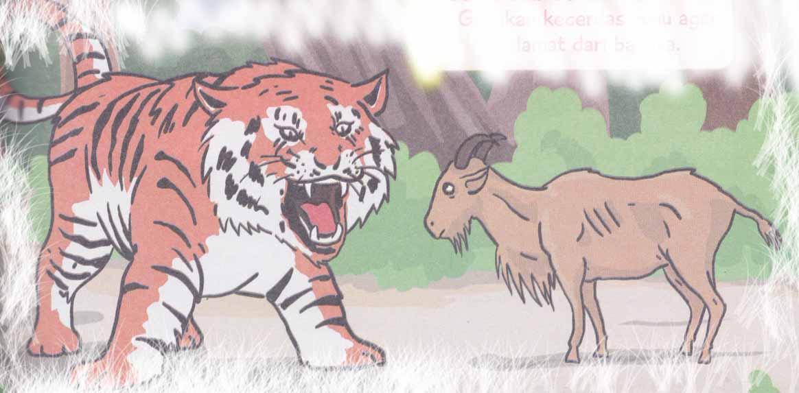 Kambing dan Harimau