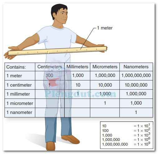 Representations of metric units of measure and numbers.