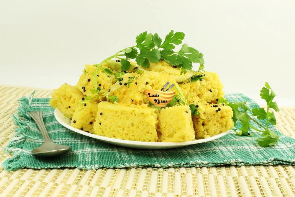 Oats Dhokla Recipe in Hindi