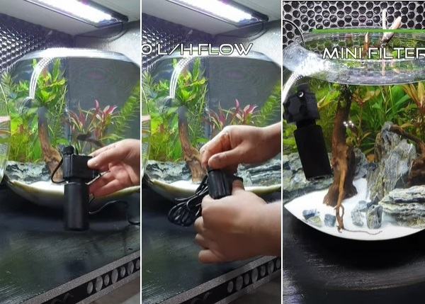 Installing a fish bowl filter in tank