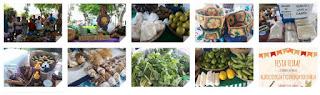 Feira de Agroecologia completa um ano com programação especial neste sábado (dia 15)