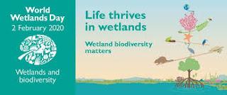 world wetland day 2020 theme