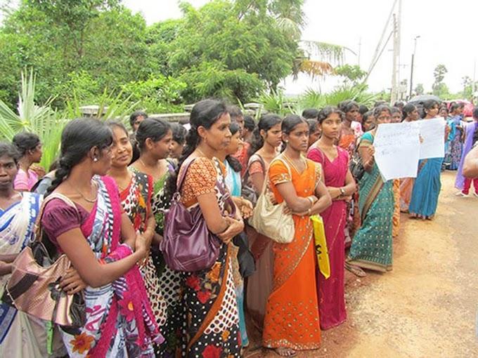 வடக்கு - கிழக்கில் 1,130 தொண்டர் ஆசிரியர்களுக்கு நிரந்தர நியமனம் | Trincoinfo