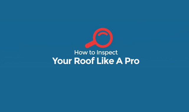 How to Inspect Your Roof Like A Pro