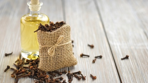 Benefits of clove pain reliever