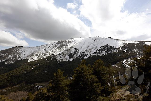 Espagne-Sierra-Guadarrama