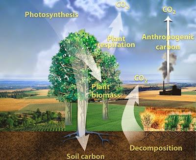 website http://genomicscience.energy.gov.