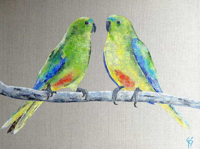 ORANGE BELLIED PARROTS