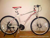 Sepeda Gunung Pacific Ascadia Aloi 24 Speed 26 Inci