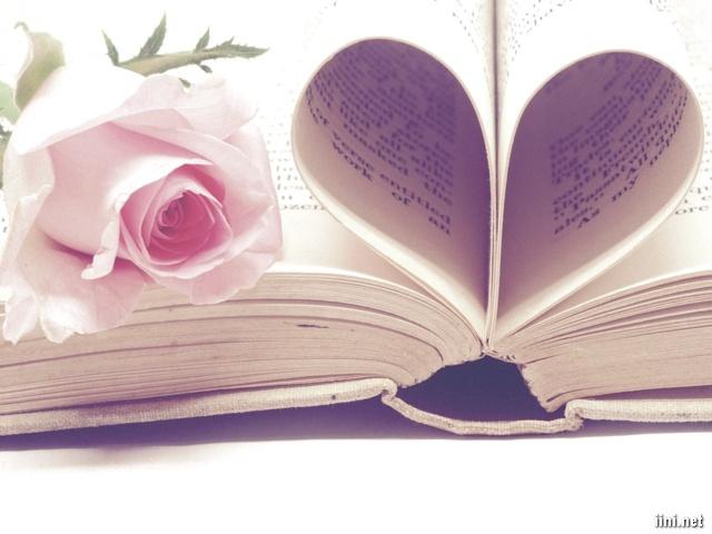 ảnh hoa hồng bên trang sách tạo hình trái tim