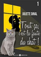 http://exulire.blogspot.fr/2018/04/tout-ca-cest-la-faute-du-chat-t1.html