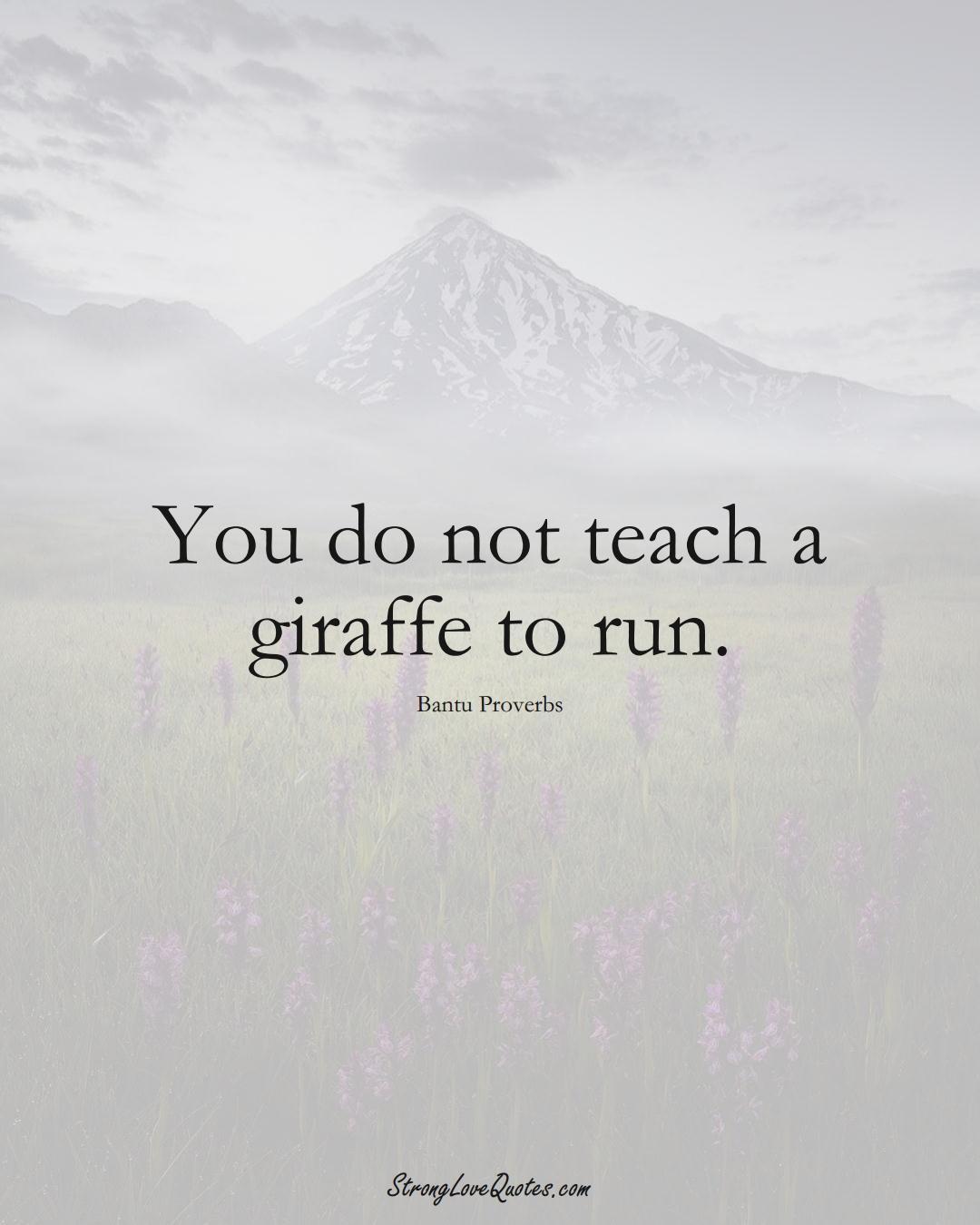 You do not teach a giraffe to run. (Bantu Sayings);  #aVarietyofCulturesSayings