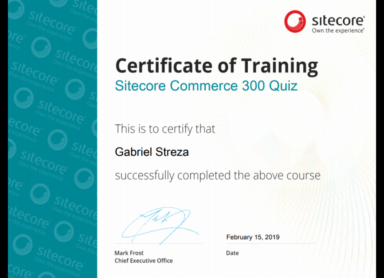 Implementing Sitecore Experience Commerce™ 9.0.2 (300