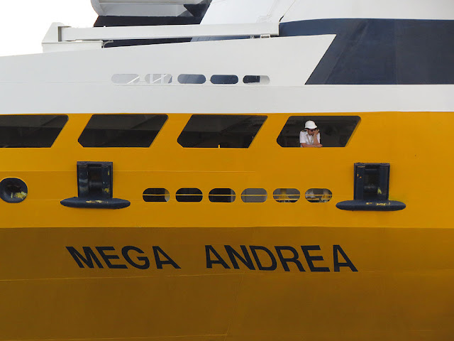 Ferry Mega Andrea, IMO 8306498, port of Livorno