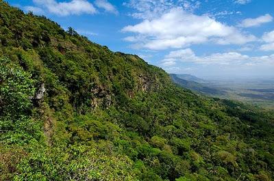 Corpo em total estado de decomposição é encontrado em mata de difícil acesso na Serra da Ibiapaba