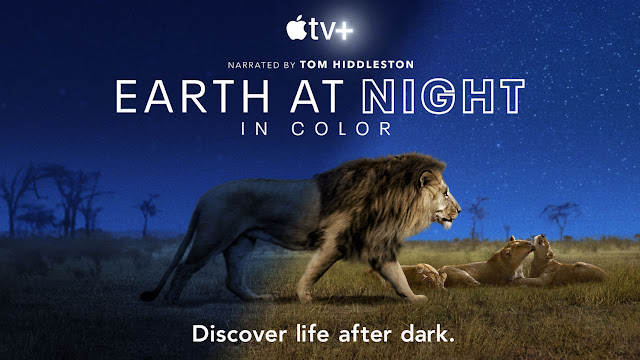 Imagen Planeta nocturno: a todo color