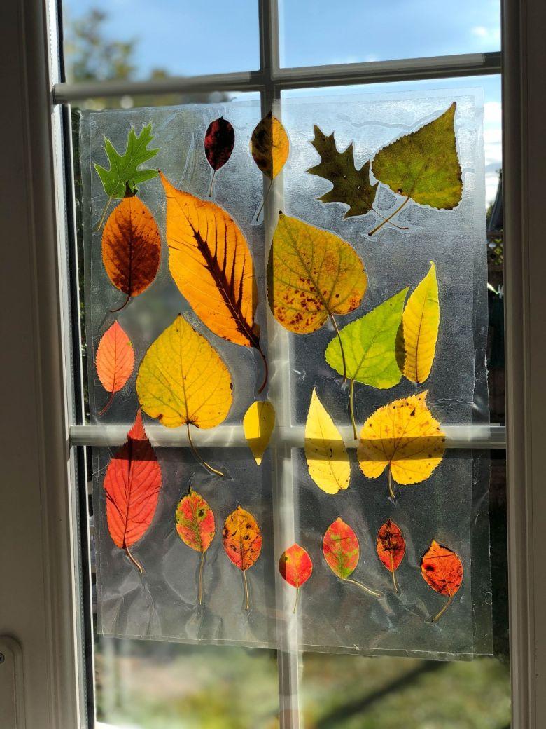 autumn suncatcher using leaves