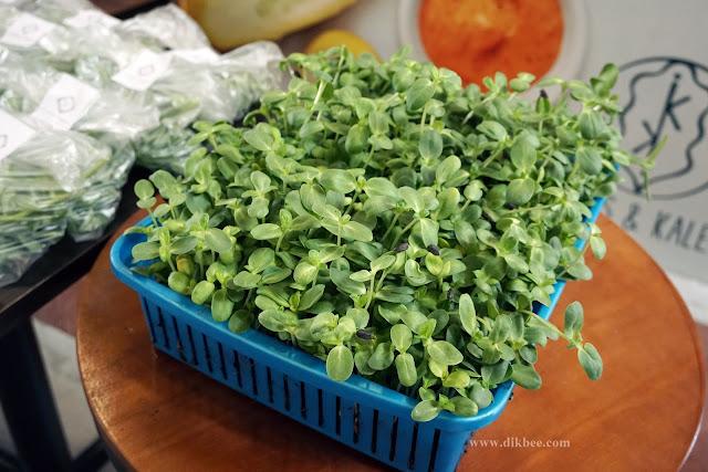 Kubis & Kale Menawarkan Poke Bowl Makanan Sihat Dan Sedap