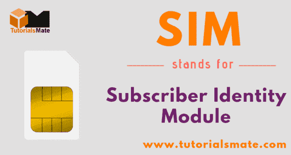 SIM Full Form