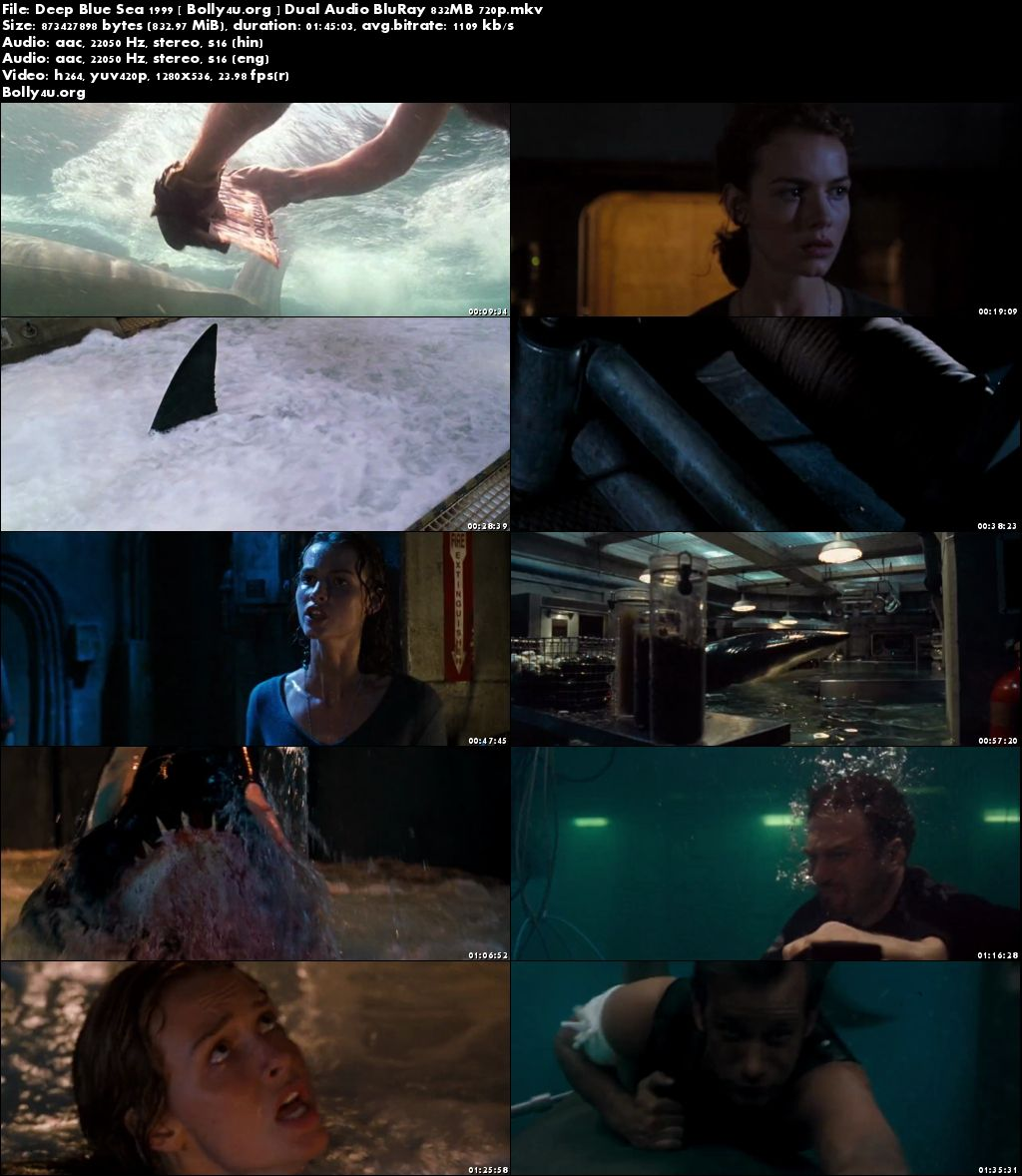 Deep Blue Sea 1999 BRRip 800MB Hindi Dual Audio 720p Download