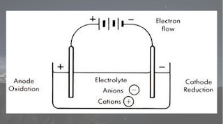 Illustration of the electrolytic cell