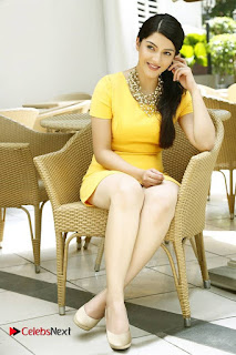 Telugu Actress Meharine Latest Po Shoot Gallery  0007.jpg