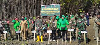 TNI Tanam Mangrove 1.000 Pohon di Pantai Hubat